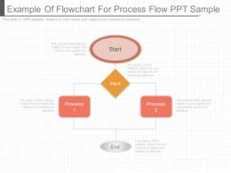 Example Of Flowchart For Process Flow Ppt Sample