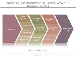 Example Of Fund Management For Financial Growth Ppt Samples Download