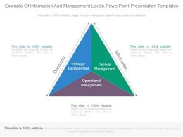 Example Of Information And Management Levels Powerpoint Presentation Templates