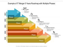 Example Of IT Merger 5 Years Roadmap With Multiple Phases