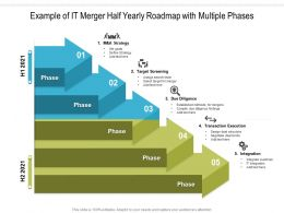 Example Of IT Merger Half Yearly Roadmap With Multiple Phases