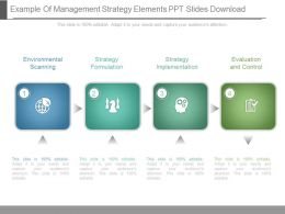 Example Of Management Strategy Elements Ppt Slides Download