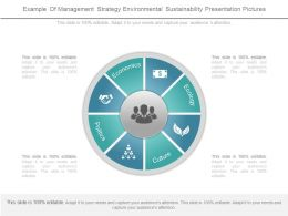 Example Of Management Strategy Environmental Sustainability Presentation Pictures