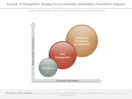 Example Of Management Strategy For Environmental Sustainability Presentation Diagrams