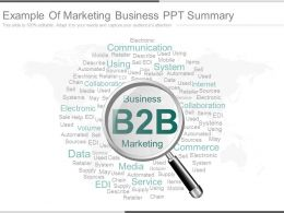 Example Of Marketing Business Ppt Summary