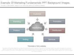 Example Of Marketing Fundamentals Ppt Background Images