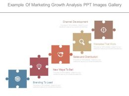 Example Of Marketing Growth Analysis Ppt Images Gallery