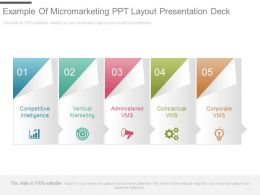 Example Of Micromarketing Ppt Layout Presentation Deck