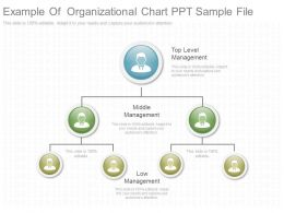 Example Of Organizational Chart Ppt Sample File