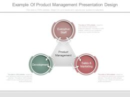 Example Of Product Management Presentation Design