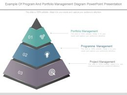 Example Of Program And Portfolio Management Diagram Powerpoint Presentation