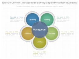 Example Of Project Management Functions Diagram Presentation Examples