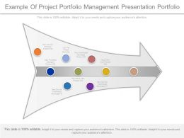 Example Of Project Portfolio Management Presentation Portfolio