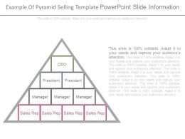 Example Of Pyramid Selling Template Powerpoint Slide Information