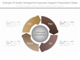 Example Of Quality Management Approach Diagram Presentation Slides