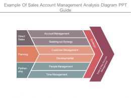 Example Of Sales Account Management Analysis Diagram Ppt Guide