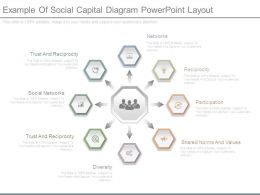 Example Of Social Capital Diagram Powerpoint Layout