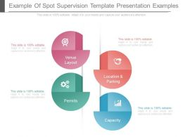 Example Of Spot Supervision Template Presentation Examples
