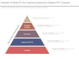 Example Of State Of The Customer Experience Diagram Ppt Example