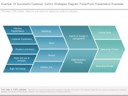Example Of Successful Customer Centric Strategies Diagram Powerpoint Presentation Examples