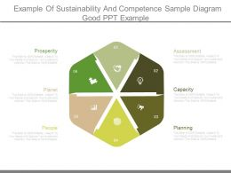 Example Of Sustainability And Competence Sample Diagram Good Ppt Example