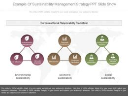 Example Of Sustainability Management Strategy Ppt Slide Show
