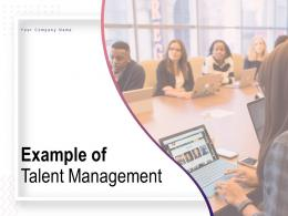 Example Of Talent Management Powerpoint Presentation Slides