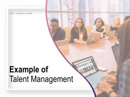 Example Of Talent Management Ppt Powerpoint Infographic Template Examples
