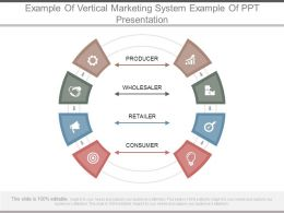 Example Of Vertical Marketing System Example Of Ppt Presentation
