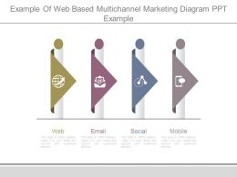 Example Of Web Based Multichannel Marketing Diagram Ppt Example