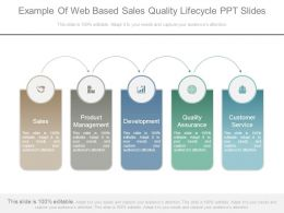 Example Of Web Based Sales Quality Lifecycle Ppt Slides