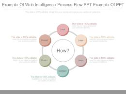 Example Of Web Intelligence Process Flow Ppt Example Of Ppt