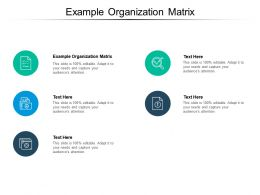 Example Organization Matrix Ppt Powerpoint Presentation Styles Portfolio Cpb