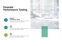 Example Performance Testing Ppt Powerpoint Presentation Gallery Format Ideas Cpb