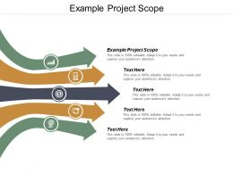 Example Project Scope Ppt Powerpoint Presentation File Brochure Cpb