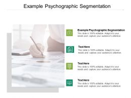 Example Psychographic Segmentation Ppt Powerpoint Presentation Summary Cpb