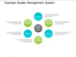 Example Quality Management System Ppt Powerpoint Presentation File Gallery Cpb