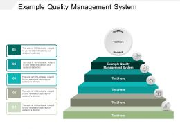 Example Quality Management System Ppt Powerpoint Presentation Layouts Tips Cpb