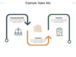 Example Sales Mix Ppt Powerpoint Presentation Inspiration Guidelines Cpb