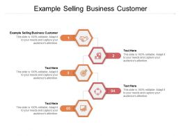 Example Selling Business Customer Ppt Powerpoint Presentation File Microsoft Cpb