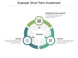 Example Short Term Investment Ppt Powerpoint Presentation Styles Smartart Cpb