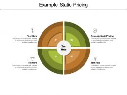Example Static Pricing Ppt Powerpoint Presentation Portfolio Tips Cpb