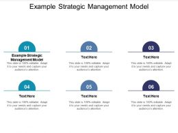 Example Strategic Management Model Ppt Powerpoint Presentation Icon Graphics Cpb