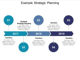 Example Strategic Planning Ppt Powerpoint Presentation Pictures Templates Cpb