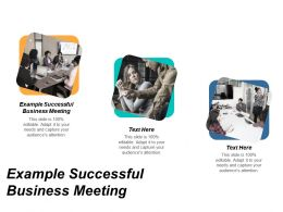 Example Successful Business Meeting Ppt Powerpoint Presentation Diagram Images Cpb