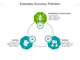 Examples Accuracy Precision Ppt Powerpoint Presentation Ideas Microsoft Cpb