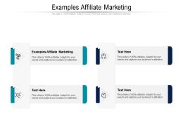 Examples Affiliate Marketing Ppt Powerpoint Presentation Slides Layouts Cpb