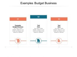 Examples Budget Business Ppt Powerpoint Presentation Outline Layouts Cpb