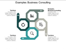 Examples Business Consulting Ppt Powerpoint Presentation Infographics Background Image Cpb