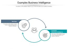 Examples Business Intelligence Ppt Powerpoint Presentation Portfolio Gallery Cpb